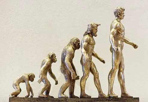 進化論|KEN'S BUSINESS|ケンズビジネス|職場問題の解決サイト